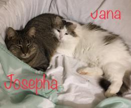 jana-josepha